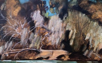Tweed Valley Landscapes